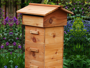 Lune Valley Beekeepers Alternative Beekeeping