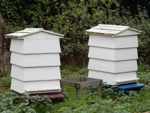 Lune Valley Beekeepers Conventional Beekeeping