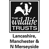 The Wildlife Trusts Lancashire, Manchester & N Merseyside Logo