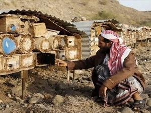 Lune Valley Beekeepers Traditional Beekeeping